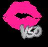 VSOLOGO01